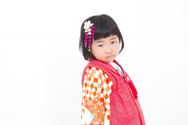 """251""""水色地・市松折鶴"""