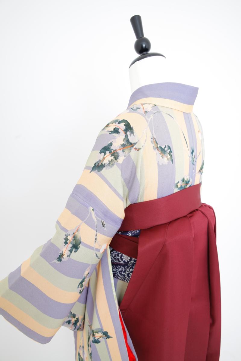 藤とグリーン太縞アンティーク小紋に袴 卒業式