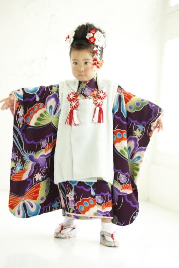 """251""""紫地蝶々アンティーク"""