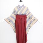 藤と太縞アンティーク小紋に袴 卒業式